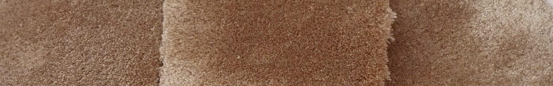 Sandshell (sample)