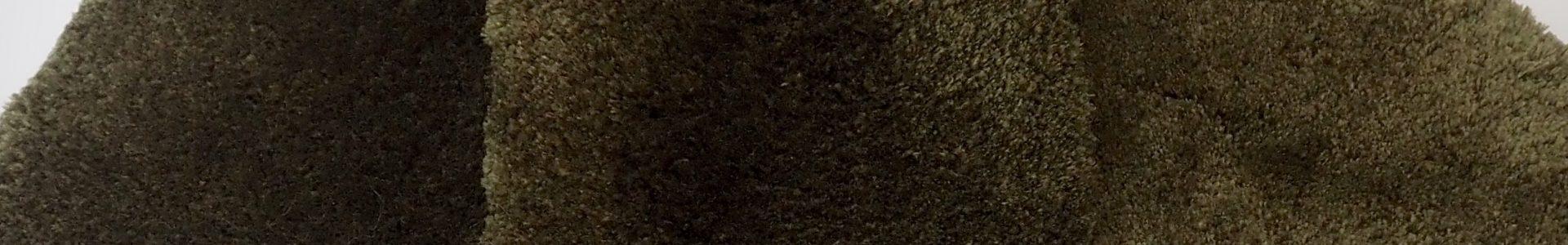 Olive Branch (sample)