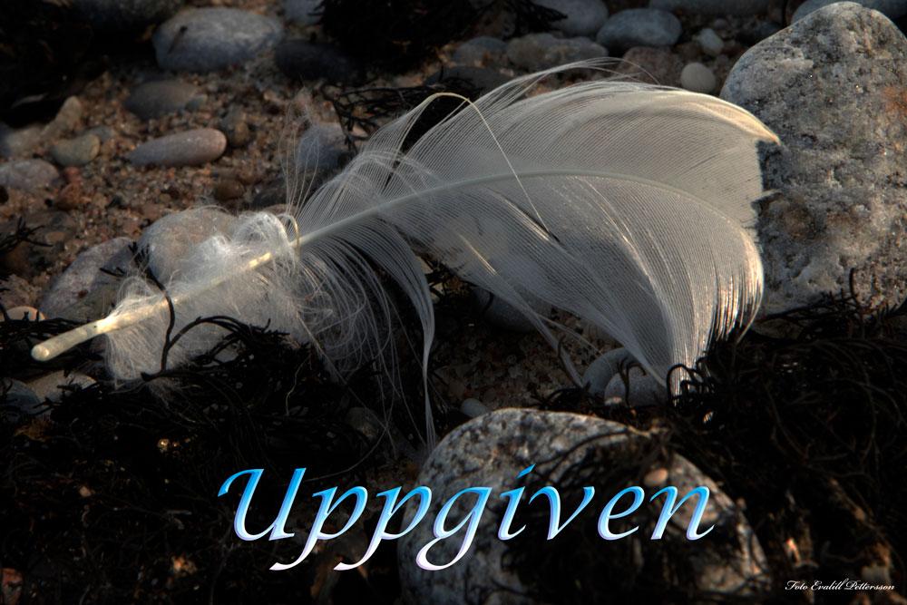 Uppgiven
