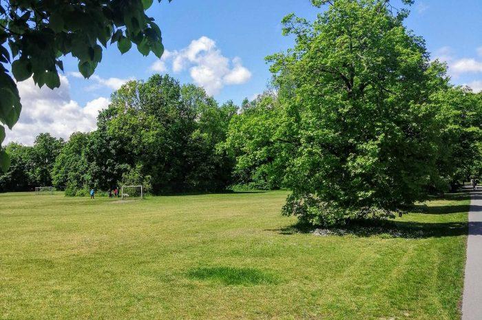 Artikel Grünflächenpflege von BM Vogel