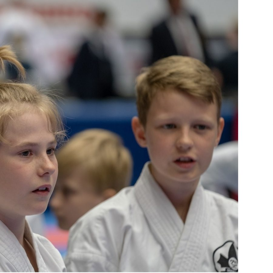 2 konkurrenter - god karateånd