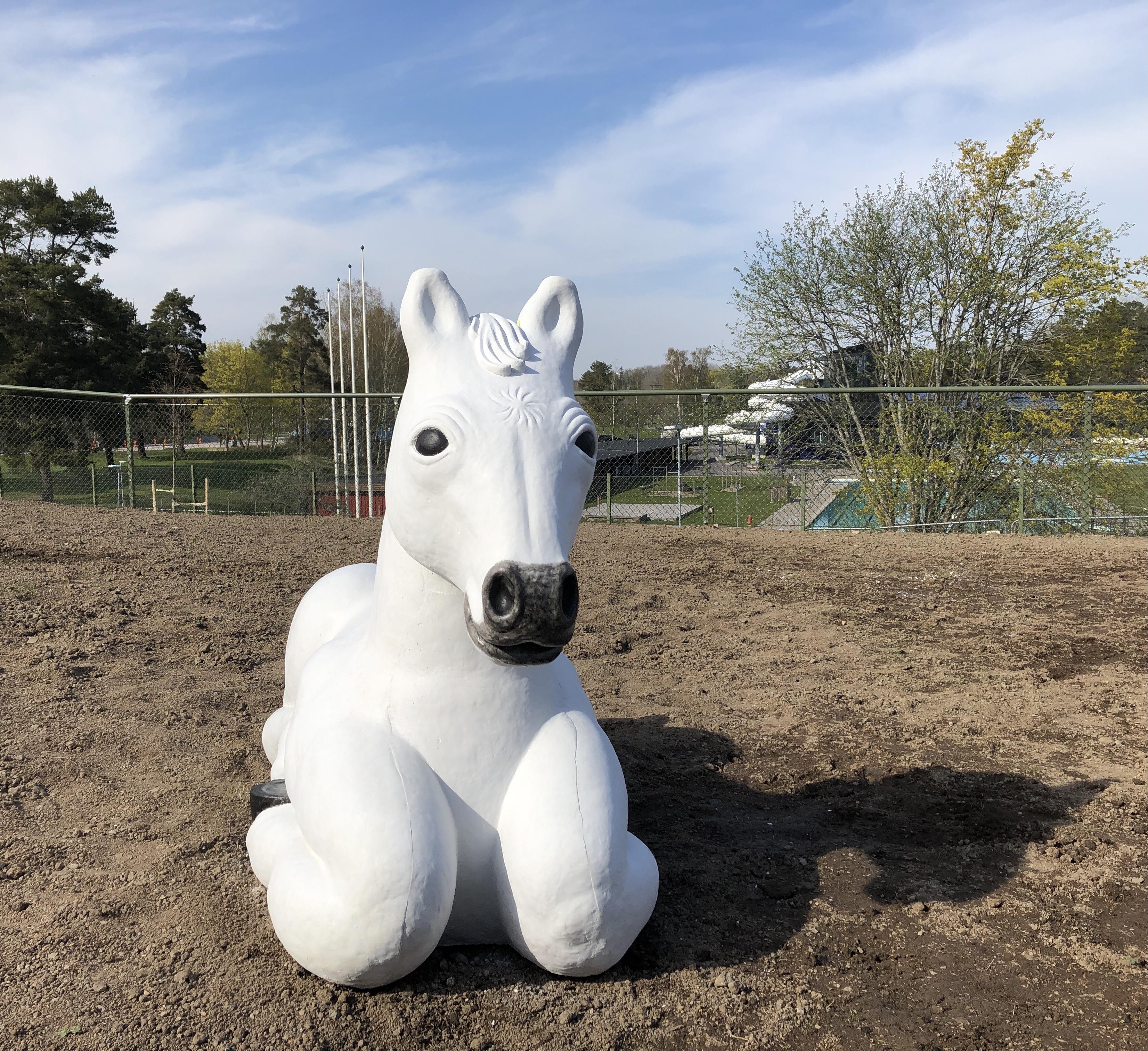 cirkus-häst1