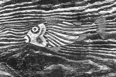 Fisk-sv-b