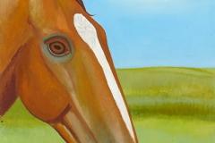 Brun_häst
