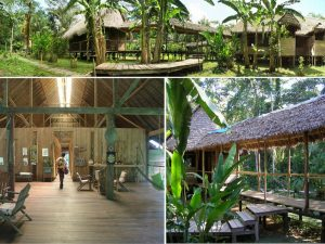 Inotawa Amazon Lodge in Tambopata Amazon Peru tour