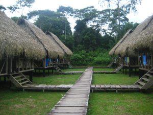Cabins Nicky Amazon Rainforest Lodge Ecuador