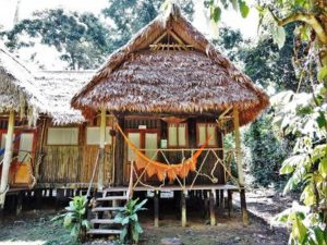 Cabin and hammock Chalalán Eco Lodge Amazon Rainforest Bolivia