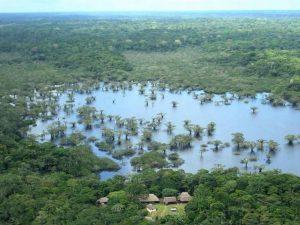 The Cuyabeno Amazon Rainforest Lodge Ecuador