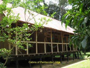Cabin Pantiacolla Lodge Peru