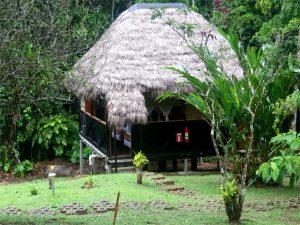 Cabin from Cuyabeno Amazon Rainforest Lodge