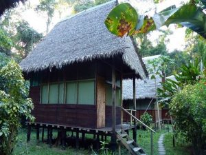 Cabin Inotawa Amazon Lodge Peru