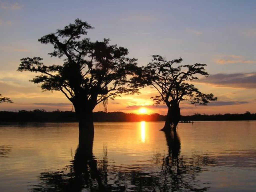 Sunset in Cuyabeno Amazon Reserve during Jamu Lodge tour