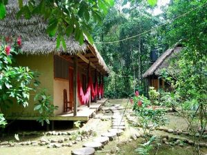 Madidi Jungle Eco Lodge Amazon Rainforest Bolivia tours