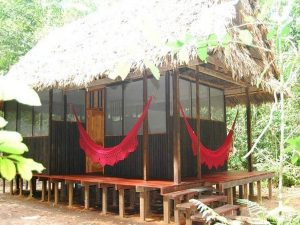Cabin Madidi Jungle eco lodge Amazon Bolivia