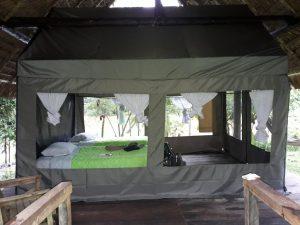 Tent Mandari Panga Yasuni camping rainforest Ecuador