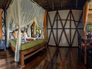 Cabin Napo Wildlife Center Yasuni Amazon Lodge