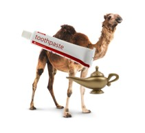 Genies, Camels, and Toothpaste