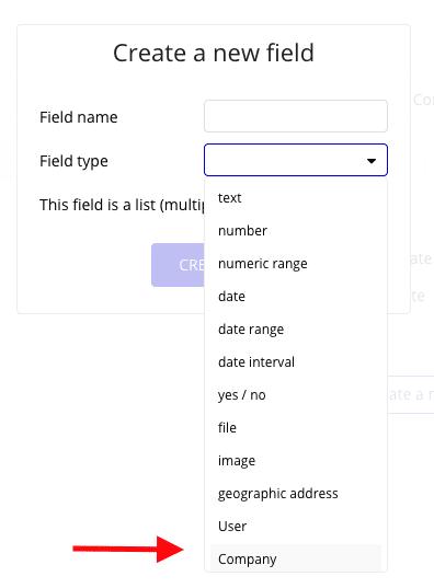 List showing Bubble's Data Type fields, as well as a custom field