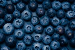 180310_blueberries_044