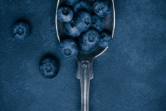 180310_blueberries_036-Edit