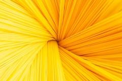 190209_pasta_007-Edit
