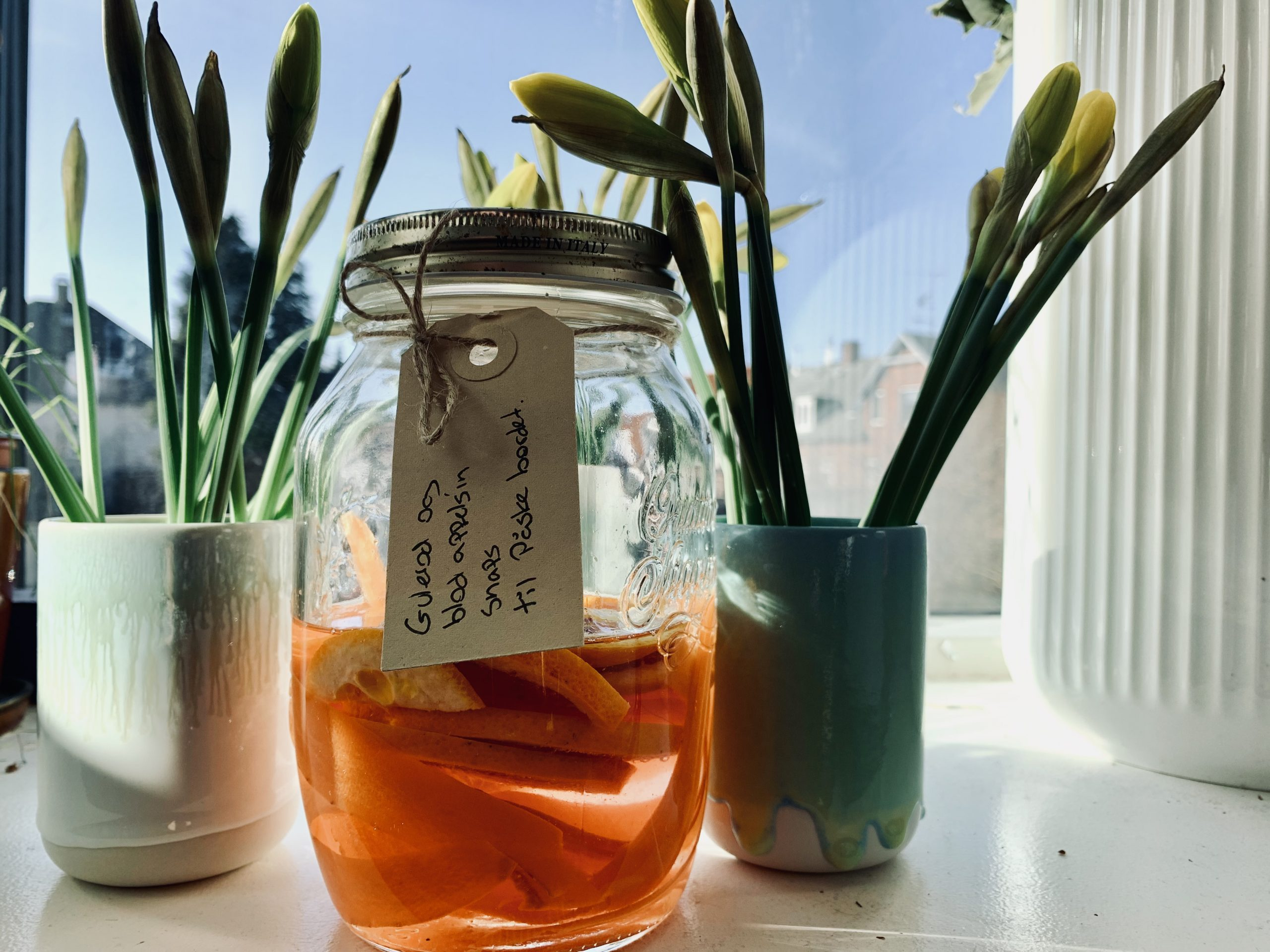 Snaps med gulerod og blodappelsin