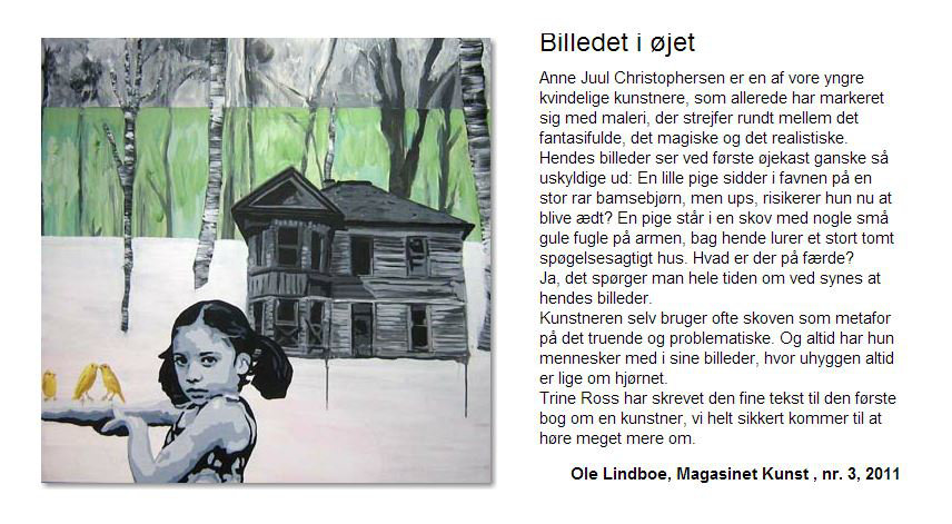 Billedet i øjet - af Ole Lindboe
