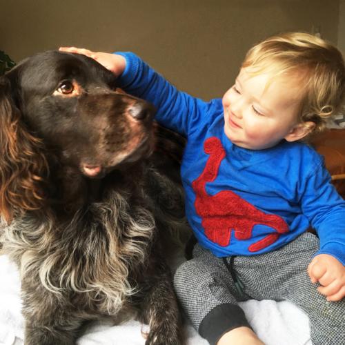 Preventief advies voor honden omgeving Tilburg