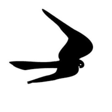 FALK – Föreningen för Antroposofisk Läkekonst