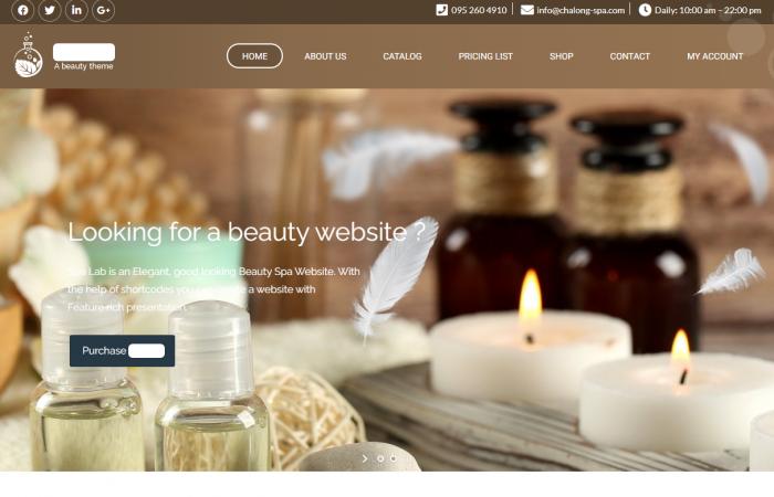 Websites Thailand Bangkok Phuket Wellness Spa