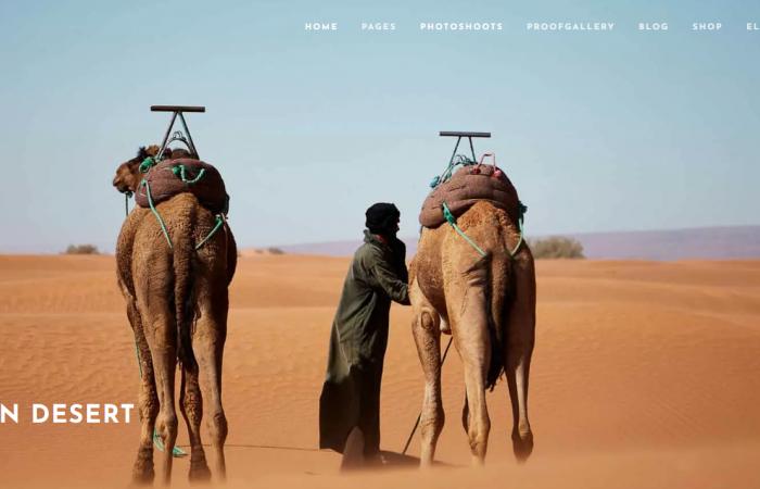 Webseiten fuer Fotografen