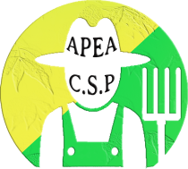 A.P.E.A – CARRIÉRES-SOUS-POISSY