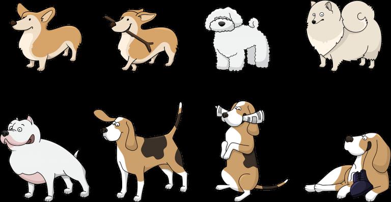 Kasacks mit Tiermotiven