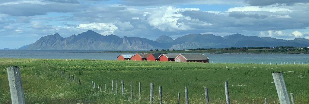 Delp Lofoten