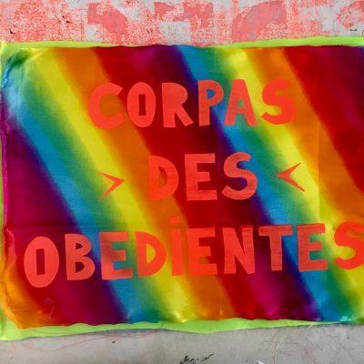 """Bandeira """"Corpas desobedientes"""""""