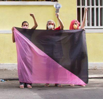 Bandeira anarco-queer