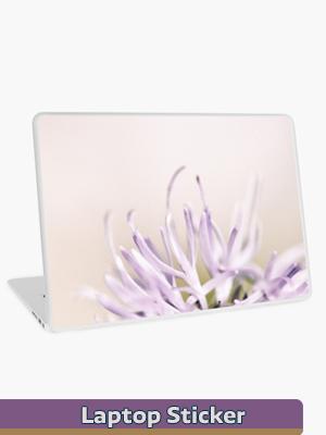 Graphic Art - Laptop Skin