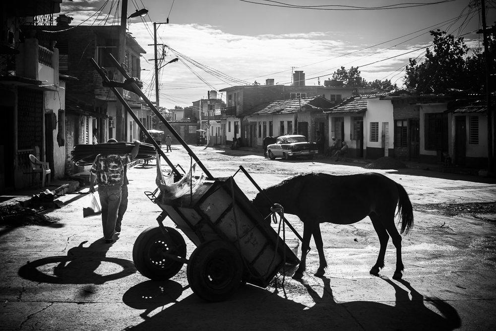 paard en kar