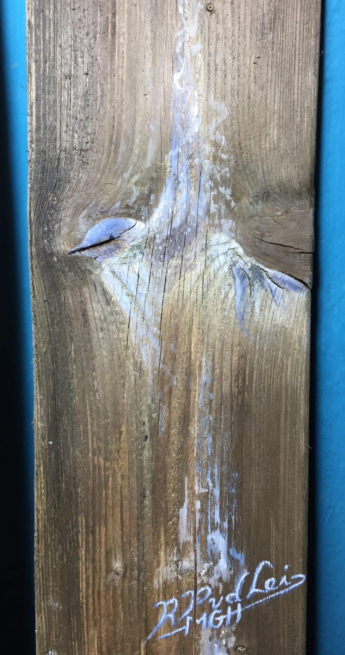 Voorbeeld Plankie met etsvogel
