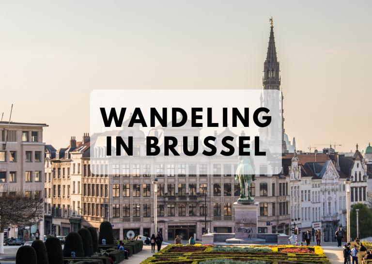 Wandeling Brussel 24 april
