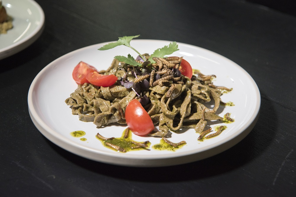 A dish of Basil Pesto Taglietelle, made with ground Black Soldier Fly larvae, and garnished with Mealworms, at Gourmet Grubb, a food stand run by chef Mario Barnard (not visible) specialising in using insects in cuisine, in Cape Town July 17, 2019. — AFP pic