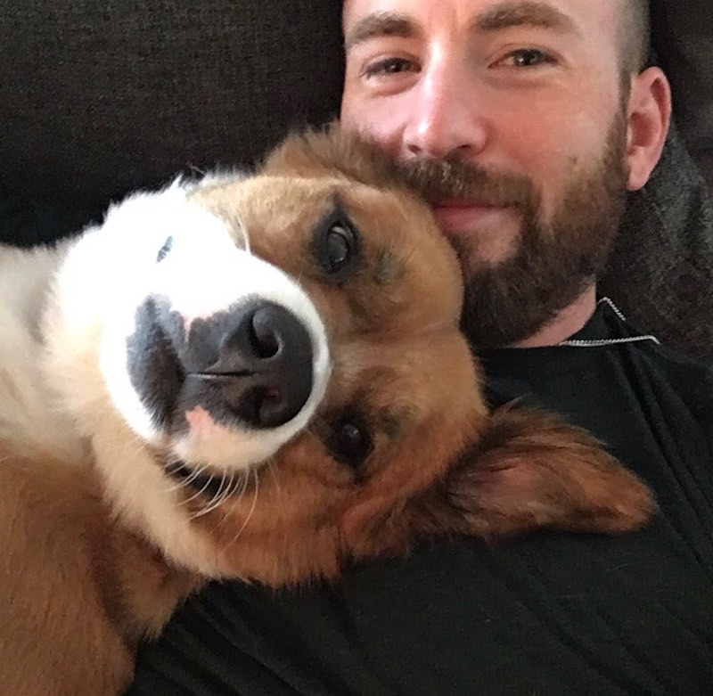 The Captain America actor with his dog Dodger. — Picture from Instagram/Chris Evans