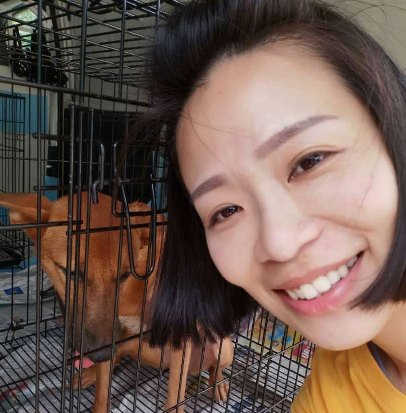 Being a pet taxi driver has given Juvena Chan a new lease of life following her retrenchment early this year. — Picture courtesy of Juvena Chan