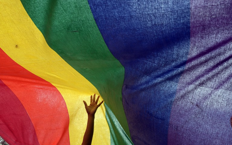 An Indian sexual minority community member gestures over a rainbow flag while participating in a Rainbow Pride Walk in Kolkata on July 7, 2013. — AFP pic