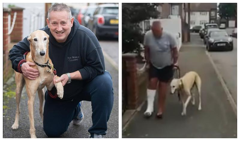 After Russell Jones broke his ankle last June, his loyal nine-year-old pet dog Billy unintentionally fooled vets with a fake limp. — Pictures from Instagram/Russell Jones, Screenshot from YouTube/This Morning