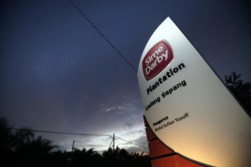 Moody's said this situation could damage Sime Darby Plantation's relationship with customers and other stakeholders, while large losses in earnings, if any, could weaken its credit profile. — Reuters pic