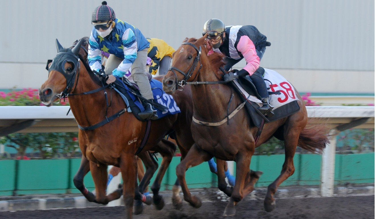 Lucky Patch trials under Matthew Poon on the Sha Tin all-weather surface.