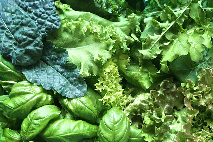Select from your favourite leafy greens to create the base of your summer salad.