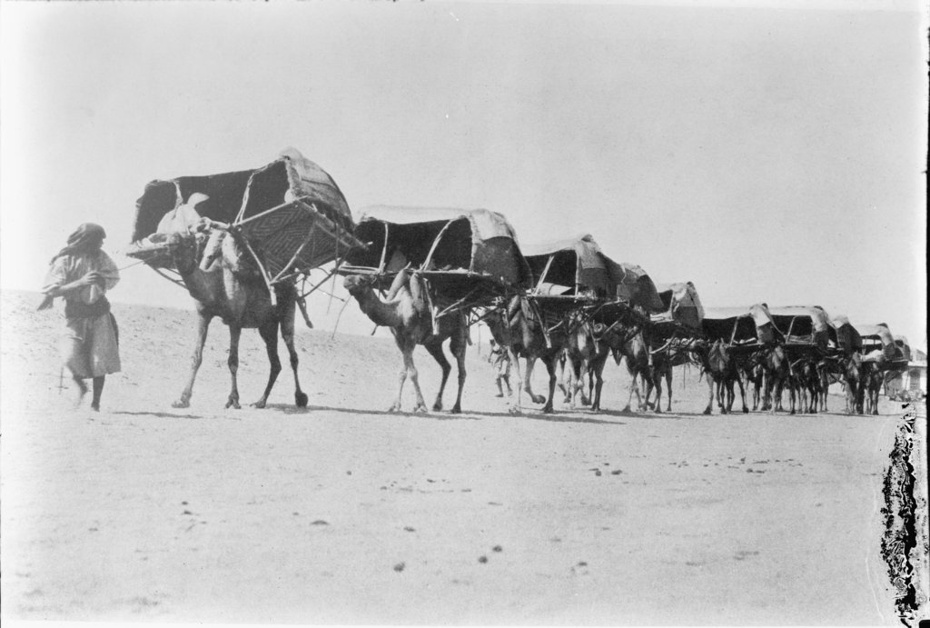 A camel caravan traveling to Makkah for the annual pilgrimage circa 1910. (Wikimedia commons)