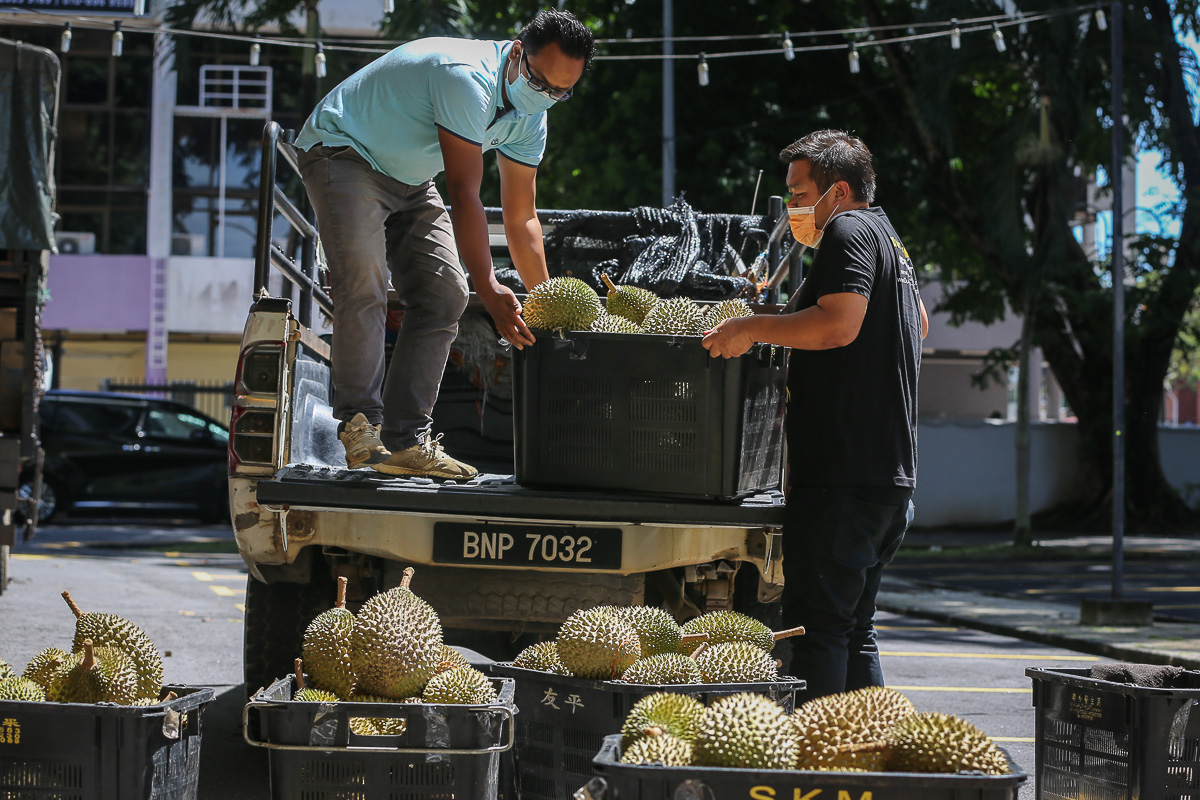 Relying on delivery is the only way for durian sellers to make it through these uncertain times. — Picture by Yusof Mat Isa